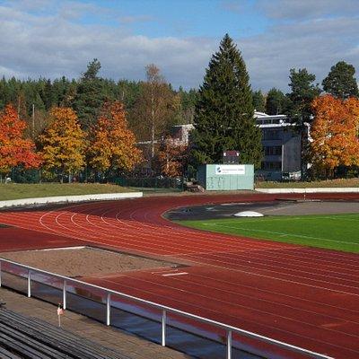 The athletics field