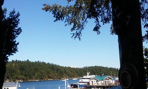 El puerto es acogedor, pequeño, y el clor del agua es impresionantemente azul