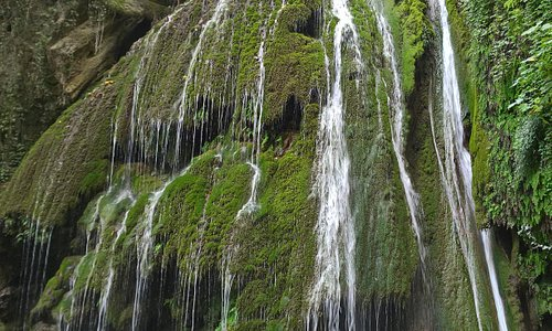 Kaboodwal, Ali bad, Gorgan, Iran. It is the largest moss wall in the Middle East.
