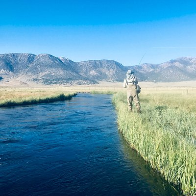The Upper Owens River near Mammoth Lakes, CA