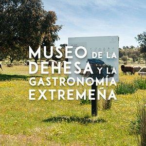 Museo de la Dehesa