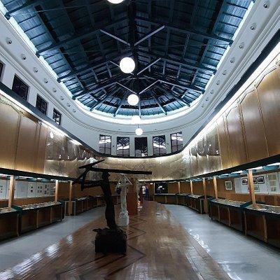 Museo Civico Cambellotti