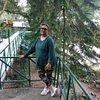 Kalpana C