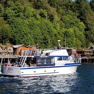 "Stern of ""RIVIERA"" while cruising by Salmon Beach."