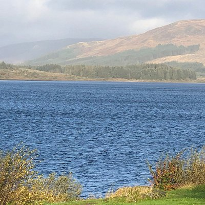 another great walking day at Clatteringshaws, oh and a scone and tea afterward in the Cafe?