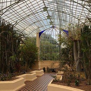 Palm House - Adelaide Botanic Garden