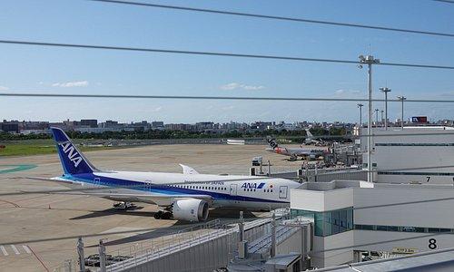 福岡空港国内線展望デッキ