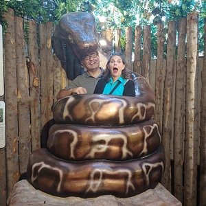 Being swallowed by the anaconda was a bonus.