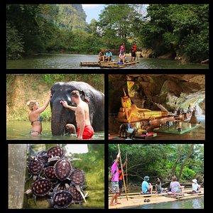 Full day trip, Phuket, Bamboo raft, elephant trekking, +bathing with baby elephant, see turtle farm, Pineapple farm, and waterfall.. 🏞️⛰️