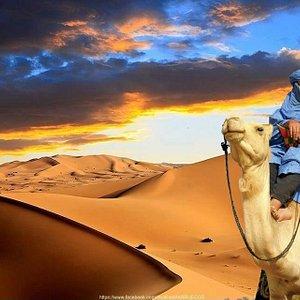 Berber Tours
