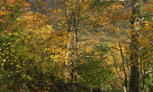 Green mountain VT