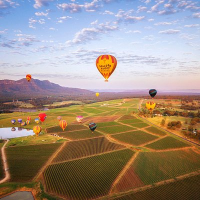Balloon Aloft flights over the vineyards