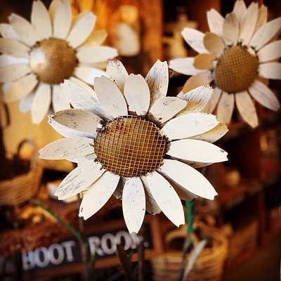Rustic Daisies, one of MANY items we post AUSTRALIA Wide