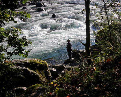 Another favourite fishing spot at the Vedder River - Tamihi Creek Campground.