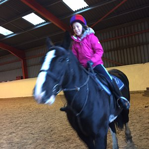 Simply the best riding school around. Amazing horse. Knowledgable and calm instructors. Complete professional service