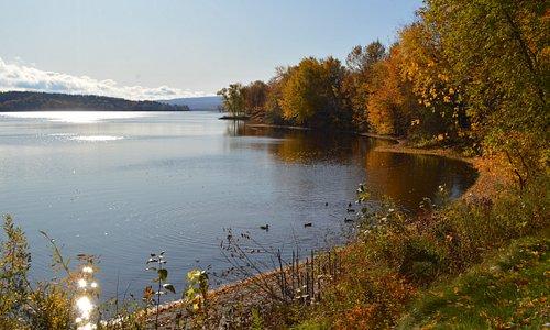 Couleurs automnales aux abords du Lac William
