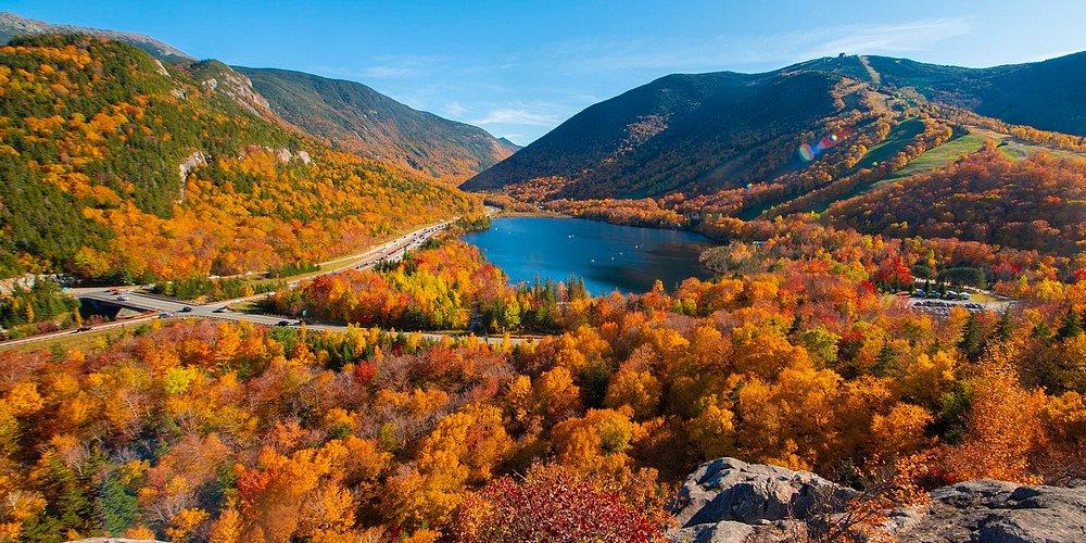 New England Foliage colors