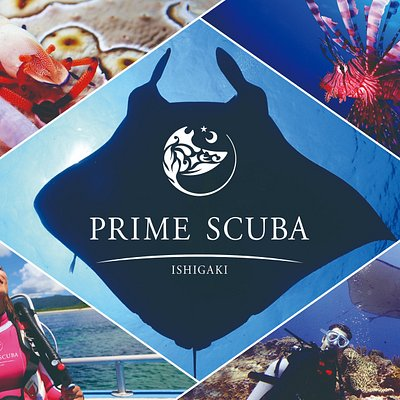 Enjoy Japan quality diving with Prime Scuba Ishigaki!