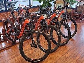 Excellent carbon bikes for rent