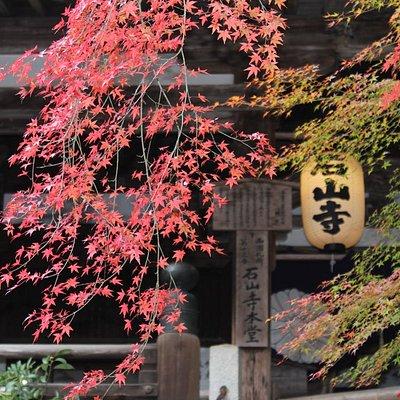 石山寺本堂(国宝)。11月中旬から12月頭にかけては紅葉に彩られます。