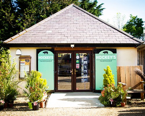 Award Winning Farm Shop - open daily selling fresh local produce; New Forest Pannage Pork and Turkeys (when in season), fresh local bread, cheeses, milk, cakes as well as a great range of wines, gins and store cupboard items.