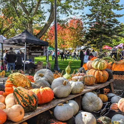 100% Producer-run market - meaning all vendors sell only what they grow, cook, or make! Seen here: Several varieties of squash from Honey Wagon Organic Farm