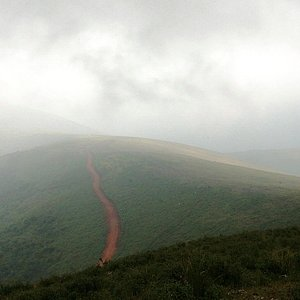 It was a foggy day ,missed clear views, nonetheless the experience was heavenly...out of this world !!!