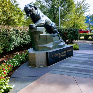 The University Of Pittsburgh Panther statue
