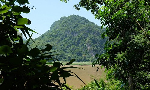 Stunning Mekong view from our Limestone habitat garden. The limestone habitat showcases local plants from the limestone mountains of Laos, such as cycads and tree ferns. Limestone karsts possess unique biodiversity and geology, and some plants and animals are unique to this kind of environment.
