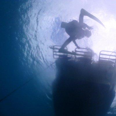 ボートの梯子