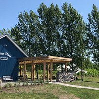 """Broken Stone Winery, shaded by whispering poplars, and views of the """"magic hill"""" pinot noir vineyard"""