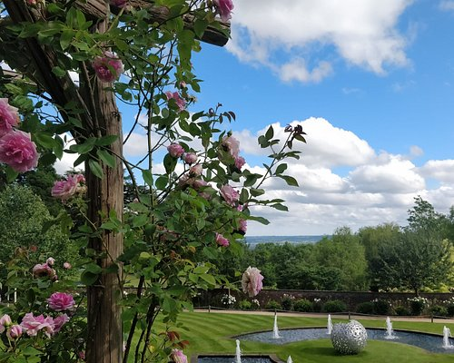 Our gorgeous Walled Garden