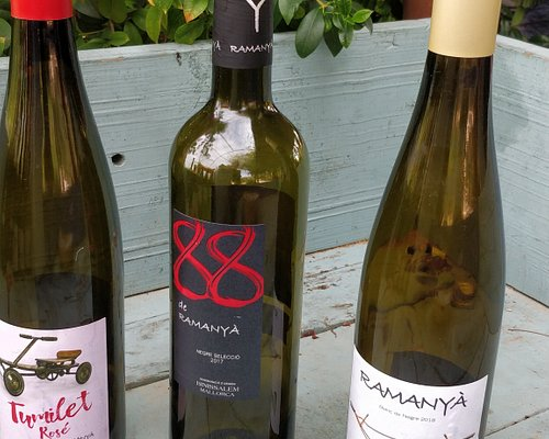 These are the wines we tasted, there was also a dessert wine. They were all very good & reasonably priced