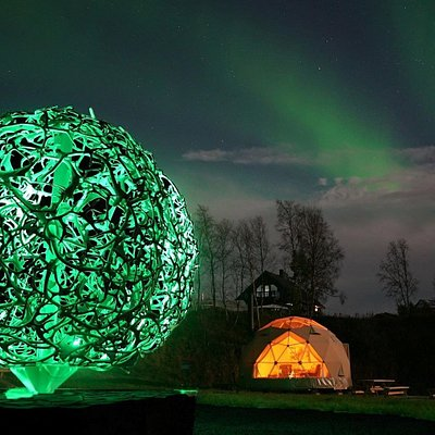 The Icon Of Wild Caribou and the Dome by night under the amazing Northern Lights.