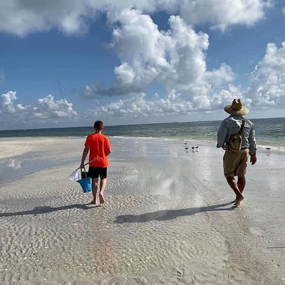 Explore islands off the grid only accessible by boat to find shells, see bird, breath the salt air and take in the beauty of Southwest Florida.