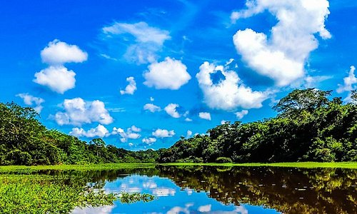 CHUCHINO Lagoon