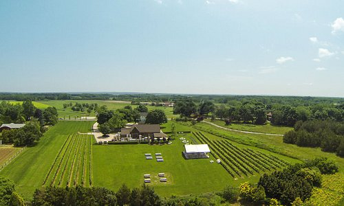 The North Fork is home to 50+ wineries