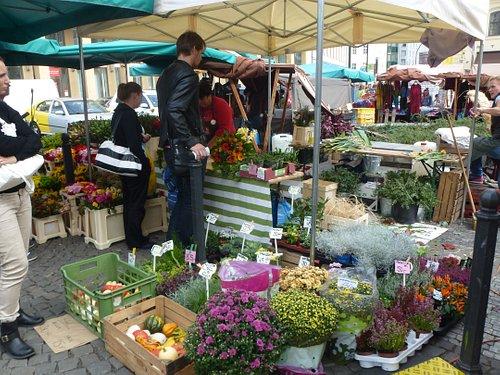 И овощи-фрукты здесь можно отыскать!!!