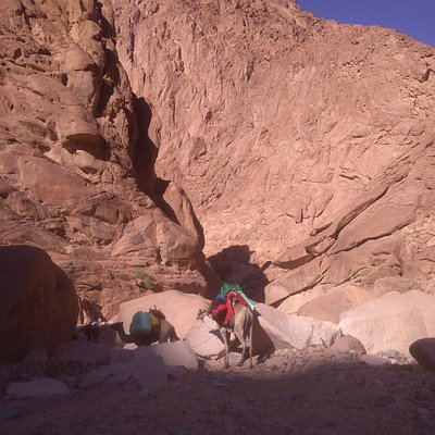 Here the gorge is so narrow that it seems to close completely. Yet it is not far from the arrival in the oasis.