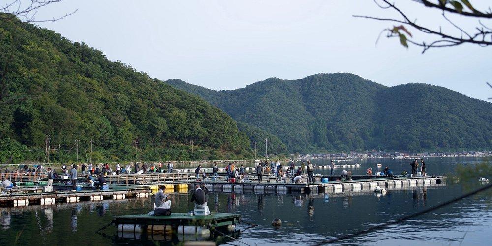 三方五湖の中の一つ。日向湖(ひるがこ)。海と繋がる汽水湖で、釣りが盛んなようでした。釣り堀なんかもあるみたいで、早朝から賑わっていました。
