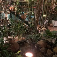 It is a diamond ! Ι highly recommend to everyone! It is a local restaurant with excellent service excellent food! Wonderful garden ! I will be back tomorrow!!!!