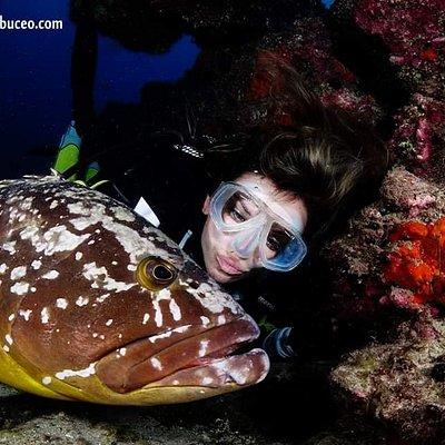 Fuerteventura Buceo Diving center