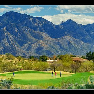 Views of Catalinas near hole 8 Mountain View course