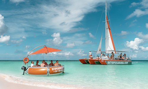 Octopus Aruba. Genuine care & comfort and the highest quality service on Aruba. UNIQUE CATAMARAN EXPERIENCES. Sailing, Snorkeling, Sunset, Private Tours and Boat Rental