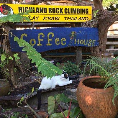 Highland Rock Climbing Thailand Railay