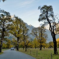 🌀The great maple ground in Austria can be reached from Munich with great public transport. There is the possibility to travel to Lenggries by train and from there with the mountain bus of the RVO to the Eng and back again. * * #visitaustria #exploreaustria #traveltipps #worldnomads #diytravel #diytraveler #travelcouple #wanderlust #hiking #maple #leafes #autumn #mountain