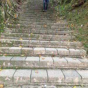 慈恩塔步道