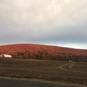 Pocumtuck  Ridge