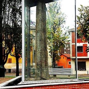 """Lapis longus, il """"menhir"""" di Chivasso"""