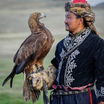 A bond between eagle and her owner